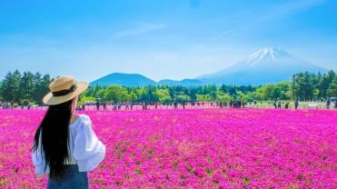 JAPAN 5DAYS-SUMMER