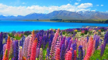 New Zealand 9Days