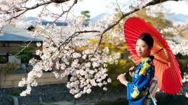 JAPAN7DAYS-SPRING